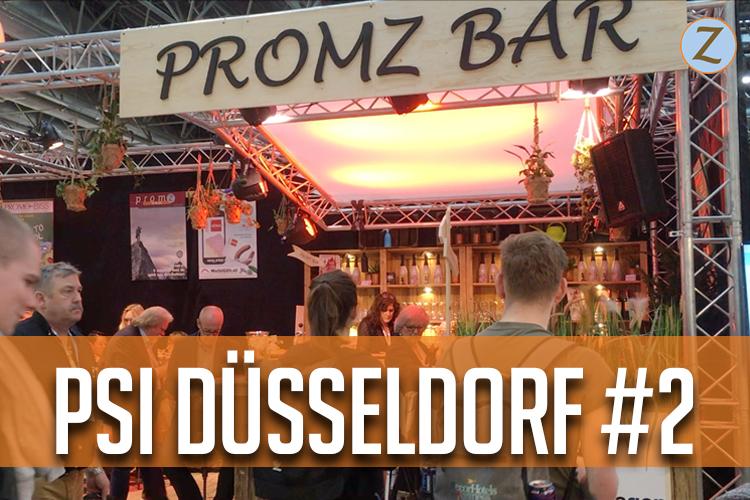 PromZvlog #13 PSI 2018: PromZ Paviljoen