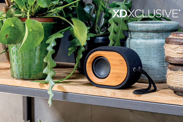Bamboo X speakers