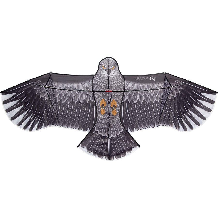 Kite • Eagle •